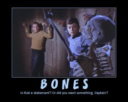 Bones --- Is that a statement? Or did you want something, Captain?