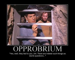 Opprobrium --- Yes, well, they lied to you, Jim. There are indeed such things as dumb questions...